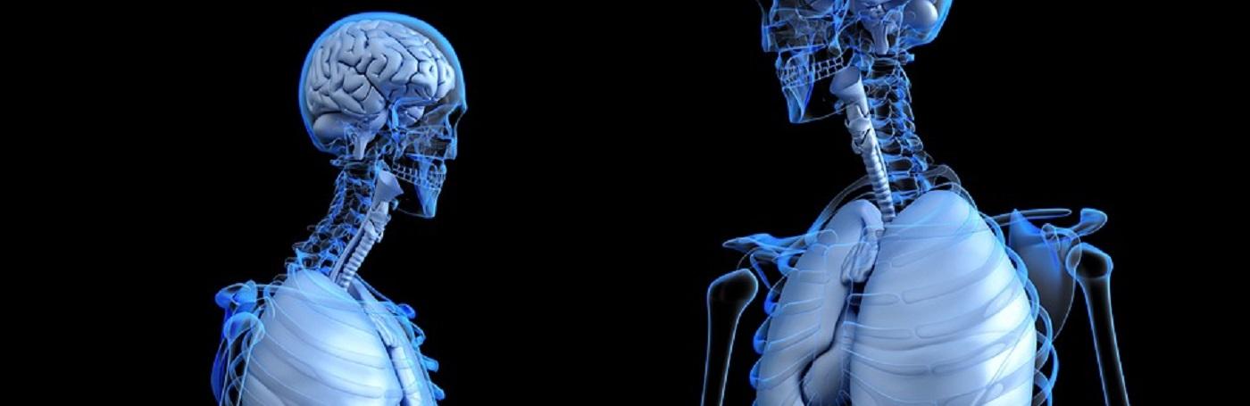 Anatomía Patológica - Escuela de Medicina - Facultad de Medicina